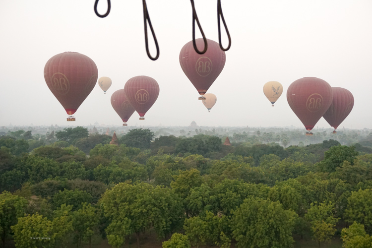 Nine balloons flying over Bagan Myanmar with trees and pagodos in view | Buy My Morning