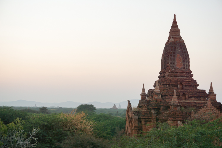 View from a remote pagoda looking out across Bagan | Buy My Morning