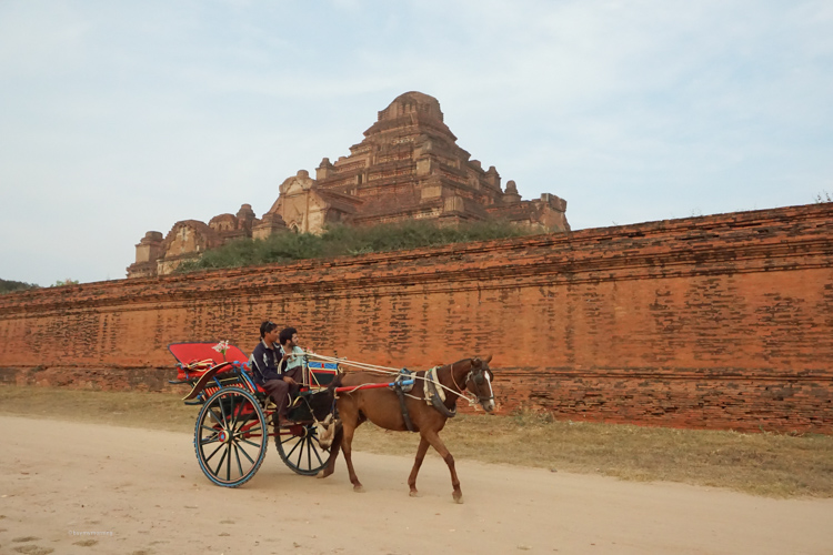 Watching a horse and cart go by in front of a beautiful temple | Buy My Morning
